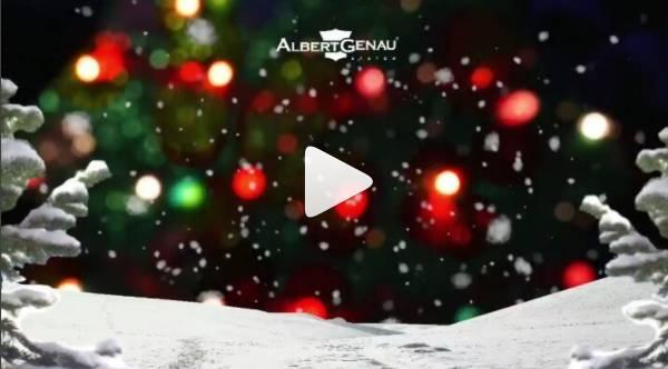 Merry Christmas and Happy New Year - News - Albert Genau